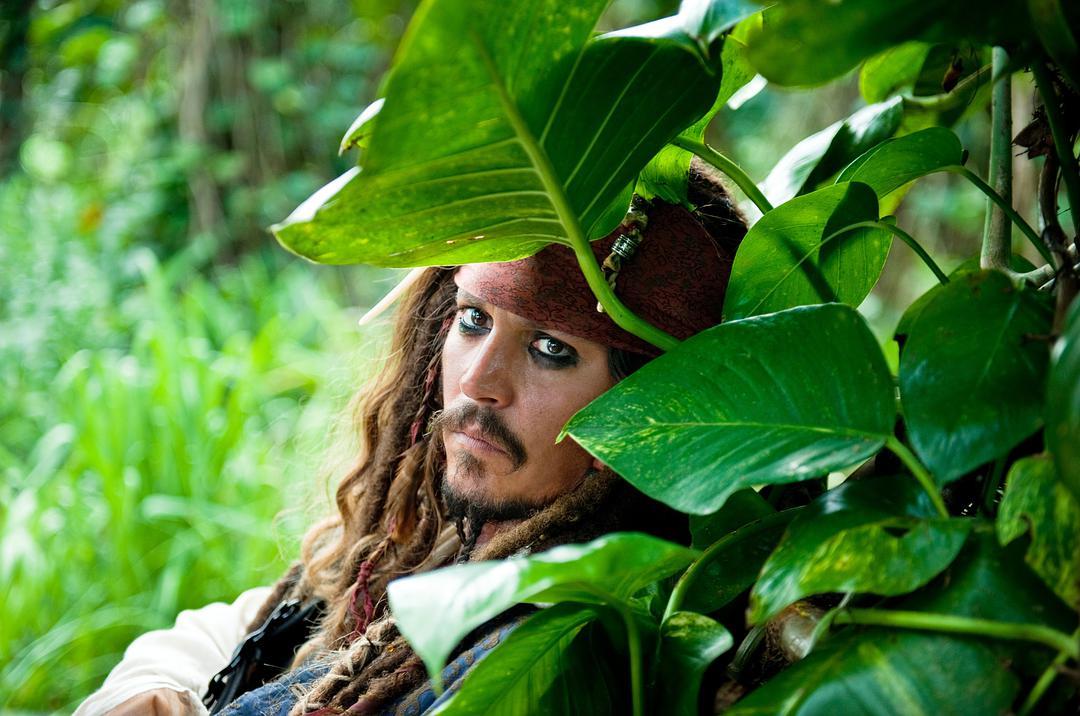 加勒比海盗4:惊涛怪浪.Pirates 4-DIG电影