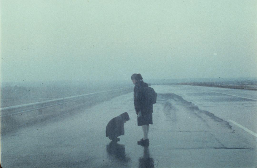 戴锦华电影大师课笔记-走进安哲·洛普洛斯《雾中风景》-DIG电影