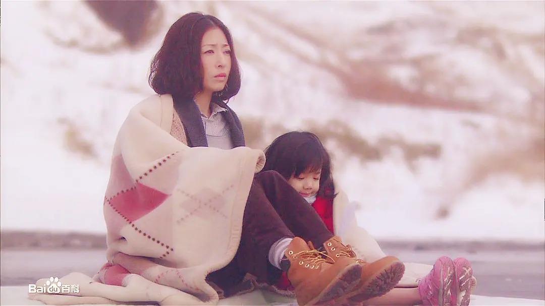 2010高分日剧《母亲》百度云网盘